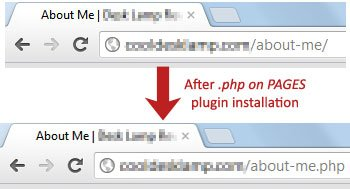 Before and After .php on Pages Installation