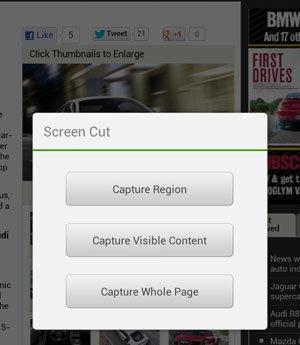 Screen Cut Option